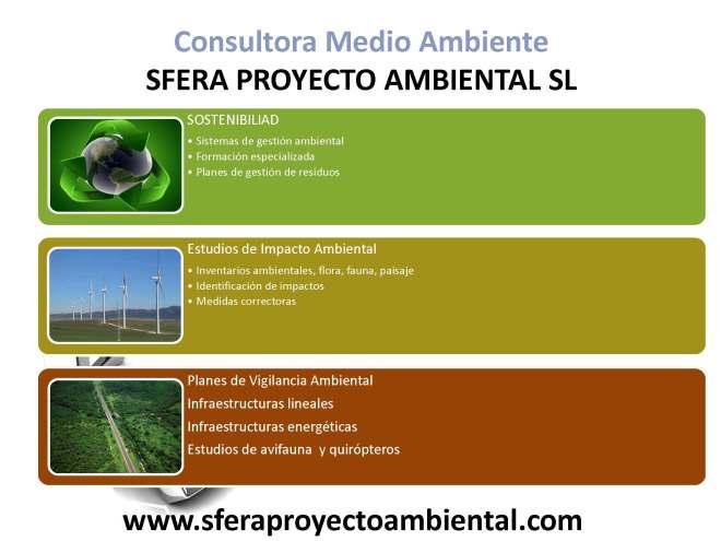 CONSULTORA_AMBIENTAL_Página_2