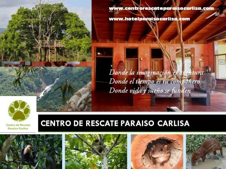 centro_rescate_paraiso_carlisa
