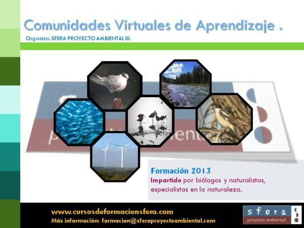 COMUNIDAD_VIRTUAL_APRENDIZAJE_sfera