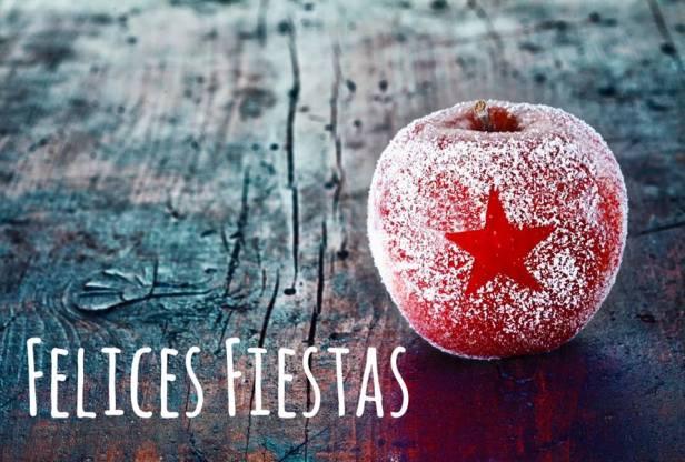 Felices fiestas y buena entrada en el 2014