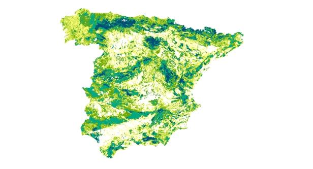 cartografia_incendios_españa