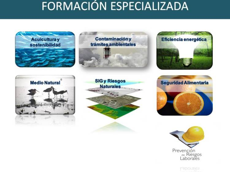 Marketing_formacion