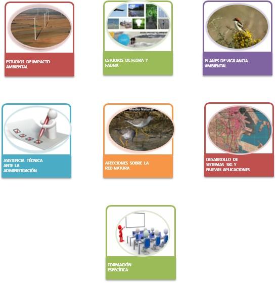 estudio_impacto_ambiental_sfera_ambiental