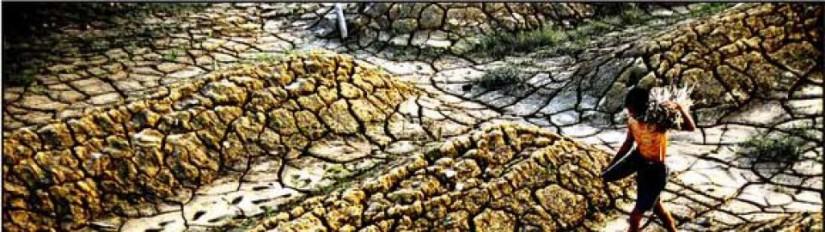 COP22: La Cumbre del Clima de las soluciones enMarruecos