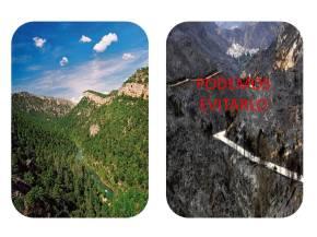 Plan de autoprotección de incendios forestales, malaga, marbela, alhaurín, coin, mijas, benalmadena, estepona
