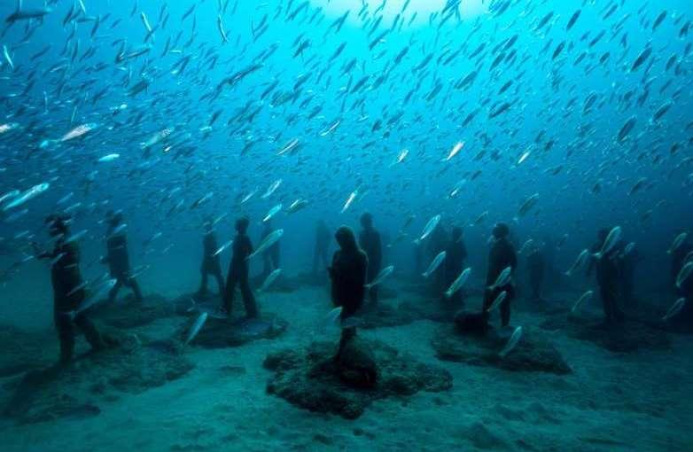 Arte y ecosistemasubmarino