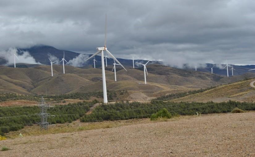 Sfera Proyecto Ambiental está realizando Estudios de Impacto Ambiental y vigilancias ambientales en plantas eólicas de la provincia de Almería.